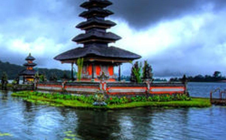 I.B.U Kyodokyokushin Indonesia (Akademi Seni Bertarung Kyokushin Indonesia) dalam waktu dekat akan membuka 3 dojo di Pulau Bali